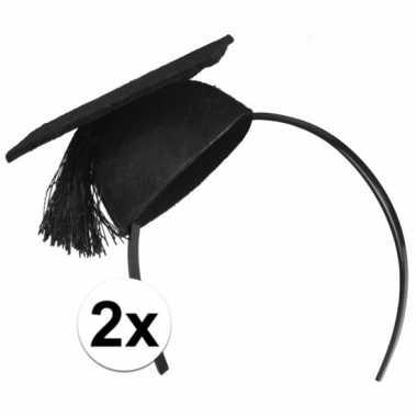 2x geslaagd hoedjes op haarband